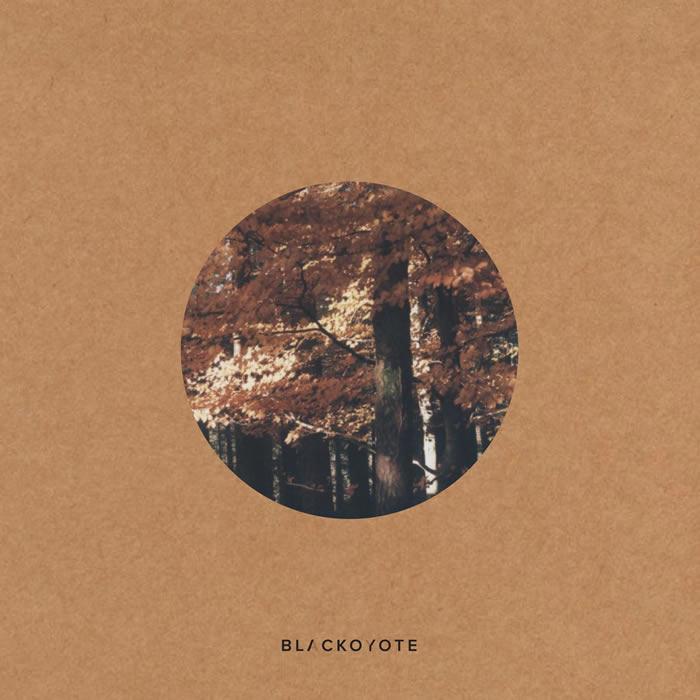 BK_vinil-cover