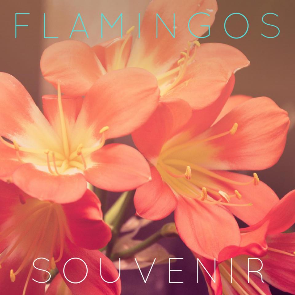 flamingos_souvenir