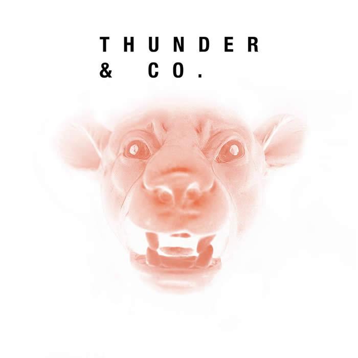 thunderco